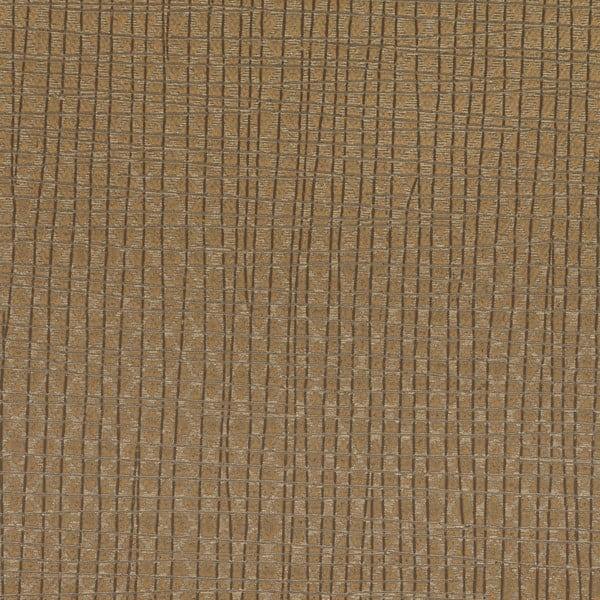 Latitude Texture