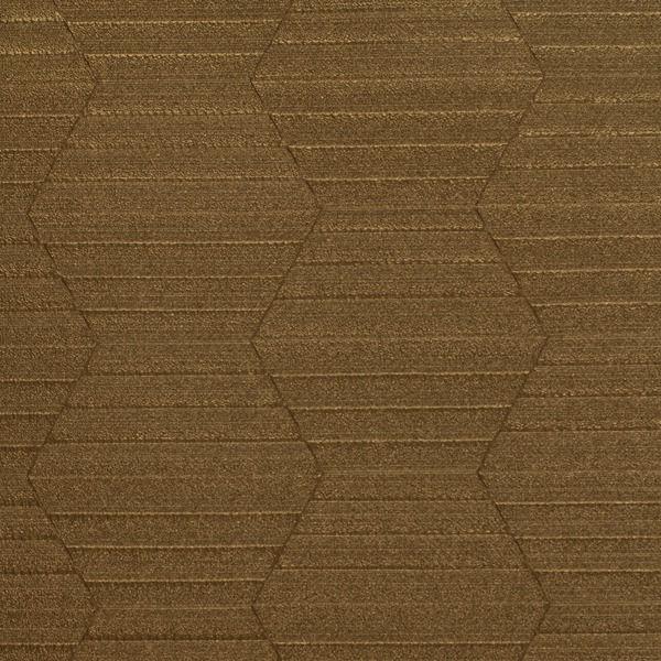 Chordata Texture